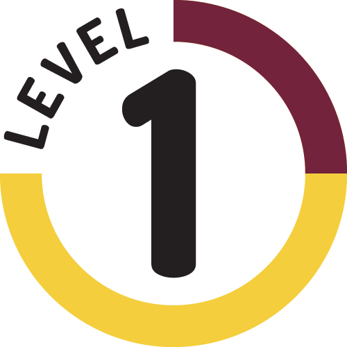 Leadership Certification Level 1