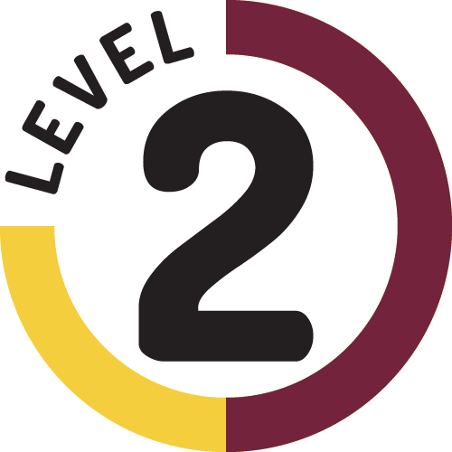 Leadership Certification Level 2